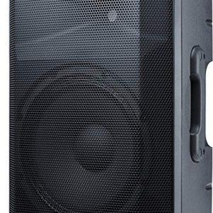 alto speaker