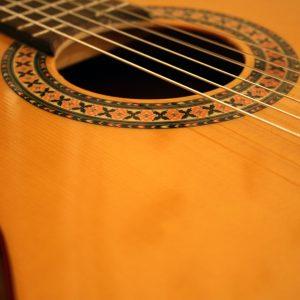 Tansen Guitar String
