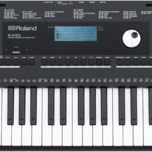 Roland E-X20 61-Key Portable Arranger Keyboard