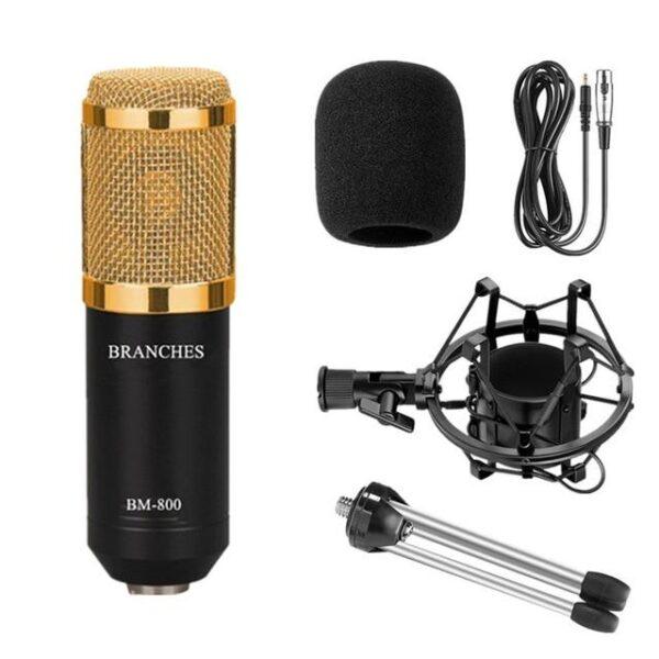 BM 800 Condenser Microphone