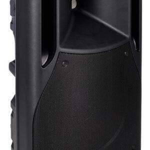 FBT HIMaxX 60 Passive Speaker
