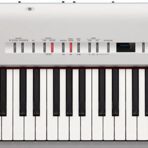 oland FP-50 Digigtal Piano