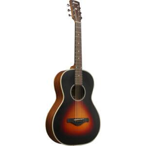 Ibanez AN60-BSM Acoustic Guitar