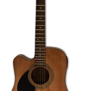 Samick D-1CE -N Greg Bennett Acoustic Guitar