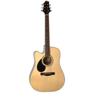 Samick GD-100S-N Greg Bennett Acoustic Guitar