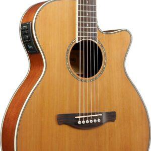Ibanez AEG15II Natural Low Gloss Guitar