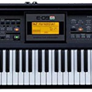 Roland E09IN Indian Edition Interactive Keyboard Arranger
