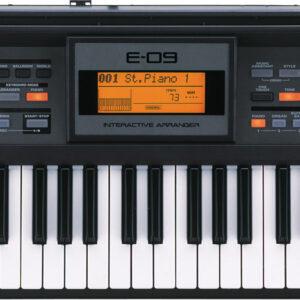 Roland E-09 61 Key Interactive Arranger